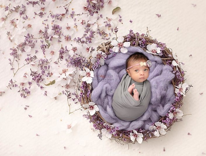 Meghna Rathore Photography, baby in basket, purple flowers, newborn photographer