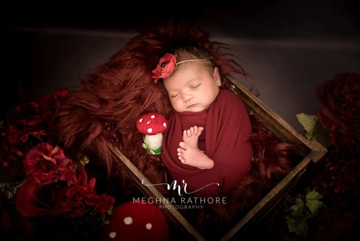 20 days old newborn baby girl in a basket at meghna rathore photography in delhi