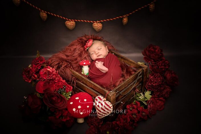 20 days old newborn baby girl in a basket with red colored themed professional photoshoot at meghna rathore photography in delhi